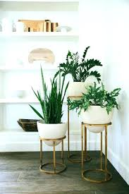 large indoor plant pots indoor large plant pot metal indoor plant stands best plant stands ideas