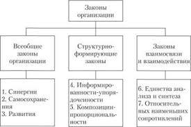 Законы организации Закон синергии Теория менеджмента Объективные и специфические законы организации