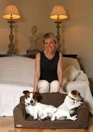 designer dog sofa faux suede brown 3