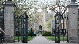 ivy essays best college essays ivy league essay top stanford  blog ivy league essay what each ivy league college is best known for