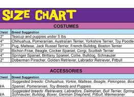 Rubies Dog Costume Size Chart Rubies Dog Costume Size Chart Amazon Com Rubies Costume