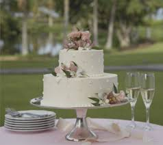 Gallery Easy Wedding Cakes Cake Decorating Ideas And Bridal Garden