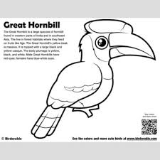 Small Picture Cute Bird Coloring Pages by Birdorable Free Downloads