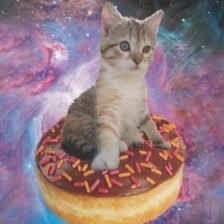 Avery Mcdonald🐙 (kittyrosemomo) on Pinterest