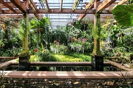 the fuqua orchid center at the atlanta botanical garden is the largest orchid center in the u s