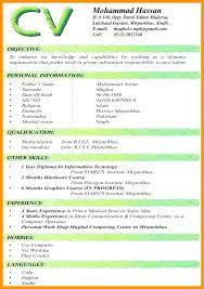 Cv Template Word Doc Illustrator Template Graphic Resume