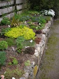 Have you ever wanted to build a rock garden? They are easy to create but  need a lot of brute strength to move the rocks so invite plenty of friends  to the ...