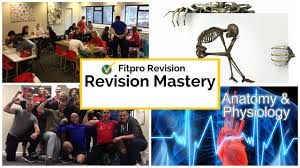 level 3 archives parallel coaching uk s 1 personal trainer anatomy quiz online coaching forget theory this stuff actually works