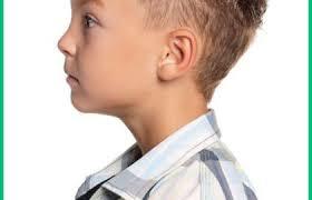 Coiffure Garcon Cheveux Souples 269169 Coiffure Homme