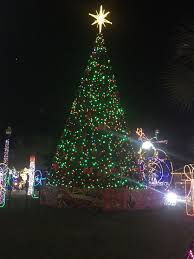 Where Is The Festival Of Lights In Hidalgo Tx Festival Of Lights Hidalgo Texas Festival Lights