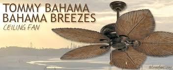 breeze ceiling fan over top landscape background tropical fans canada ideas