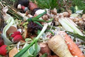 Image result for wrap food waste images