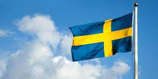 Bildresultat för sveriges flagga bild