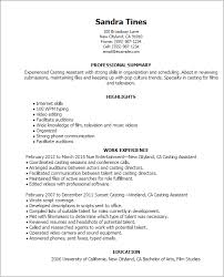 Resume Example Templates Free Professional Resume Templates