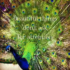 Peacock Beauty Quotes Best of Peacock Thomas Image Jpg Quotes