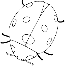 Lady Bug Coloring Sheet Free Free Ladybug Coloring Pages Download Free Clip Art