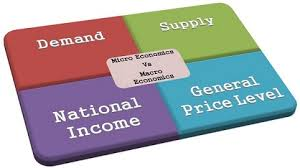 Differences Between Micro And Macro Economics With