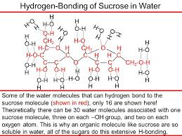 hydrogen bonding of sucrose in water o h ch 2 h o h c o h ch 2 o h