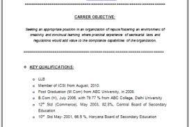 Microsoft Office Curriculum Professional Curriculum Vitae Microsoft Office Page 123 Of