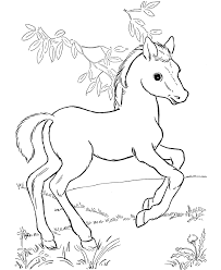 Small Picture 30 Printable Horse Coloring Pages