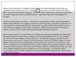 mamon in spanish slang essay lab report writing essays what does essay mean in spanish slang