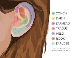 Piercing Placement Chart Second Ear Piercing Where To Get Ears Pierced Goop