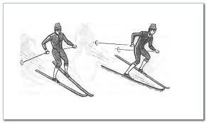 Урок лыжной подготовки в классе Торможение упором  Торможение упором на лыжах