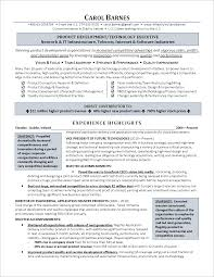 Executive-Level Information Technology Resume