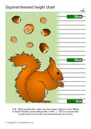 Red Squirrel Themed Childrens Height Chart Sb5891