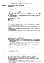 Mgr Business Development Resume Samples Velvet Jobs
