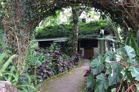 Rainforest Bedroom Four Bedroom Bungalows Selva Negra Ecolodge