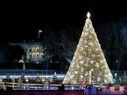 Dc White House Christmas Tree Lighting National Christmas Tree Lighting