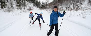 How To Choose Cross Country Nordic Skis Mec Learn