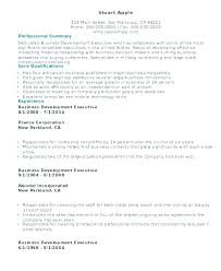 Business Development Executive Resume Doc Template Sample Temp Gorgeous Resumedoc