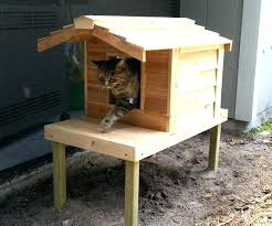 outdoor cat shelter outdoor cat shelter large size of cat outdoor cat shelter cat house plans outdoor cat