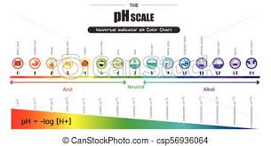 Color Chart For Universal Indicator The Ph Scale Universal Indicator Ph Color Chart Diagram