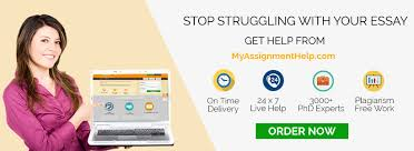 essay helper online co essay helper online