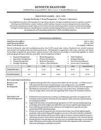 Executive Director Resume Summary Executive Resume Employment