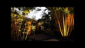 tropical outdoor lighting. landscape lighting for trees and garden area tropical outdoor