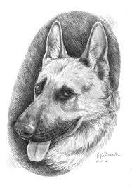 Animali Da Disegnare A Matita Facili