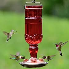 perky pet red antique glass hummingbird feeder the bird and more
