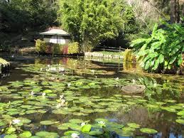 Small Picture Oriental Garden Design Unique 4 Oriental Garden Designs Ideas