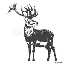 Vector Deer Tuto A Podobné Vektorové Grafiky Naleznete Ve Službě