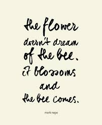 Quotes In Beauty Best Of Law Of Attraction Money Pinterest Inspirational Beautiful Life