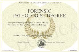 forensic pathologist forensic pathologist degree