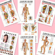 Meridian Energy Pen Chart Whole Body English Acupuncture Meridian Acupressure Points