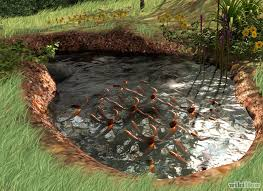 diy patio pond: diy fish pond diy fish pond diy fish pond