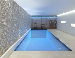 Smartness Inspiration Basement Pool Swimming Pool Steam Room Spa