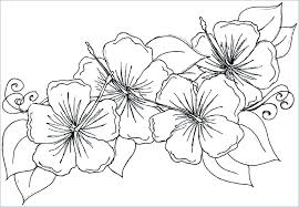 Coloring Pages For Girls Flowers Coloring Pages Flowers And Hearts