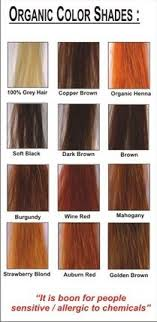 Radico Hair Color Chart Radico Colour Me Organic Hair Colour I 2019 Bruna